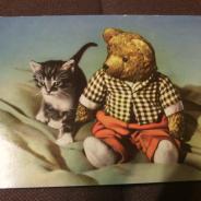 Открытки СССР, серия котята