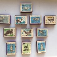 Спички коллекция животные с 1967 по 1974 гг.